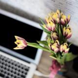 Какие цветы дарить начальству?