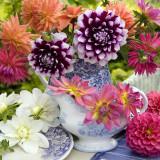Какие цветы дарят летом?