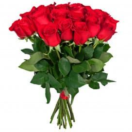 Роза Фридом-40 см