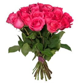 Роза Пинк Флоид-70 см