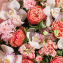 Букет цветов из 9 орхидей с гвоздикой, розой и матиолой