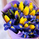 Букет из 15 жёлтых тюльпанов и синих ирисов