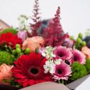 Букет цветов из 5 роз с голландской гвоздикой, герберой и тюльпанами