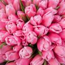 Букет цветов 51 розовый тюльпан в упаковке
