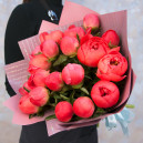 Букет цветов из 19 коралловых пионов в упаковке (Премиум)