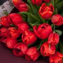 Букет цветов из 25 красных тюльпанов в упаковке