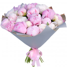 Букет цветов из 33 белых и розовых пионов в упаковке (Премиум)