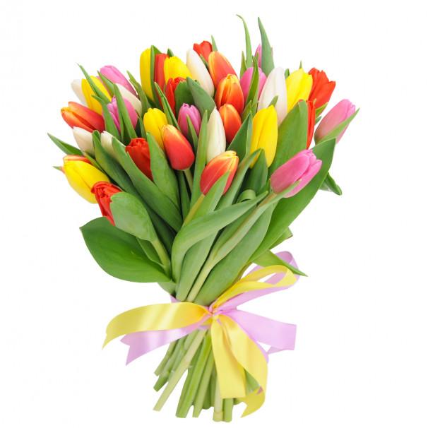 Букет цветов 35 тюльпанов микс