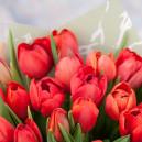 Букет цветов из 35 красных тюльпанов в упаковке