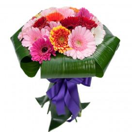 Букет цветов из 25 мини гербер с аспидистрой