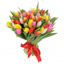 Букет цветов 51 тюльпан микс