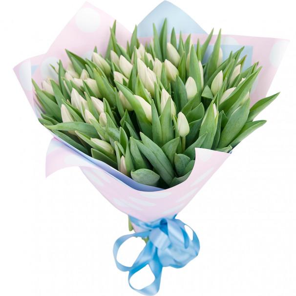 Букет цветов 51 белый тюльпан в упаковке