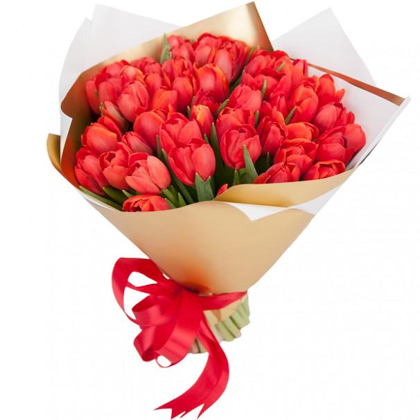 Букет цветов 51 красный тюльпан в упаковке