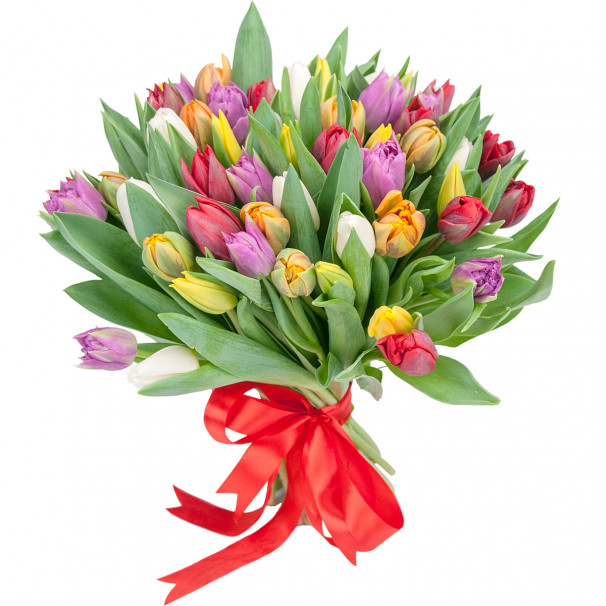 Букет цветов из 51 тюльпана микс