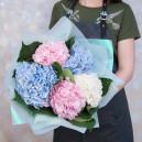 Букет цветов из 5 гортензий микс в упаковке