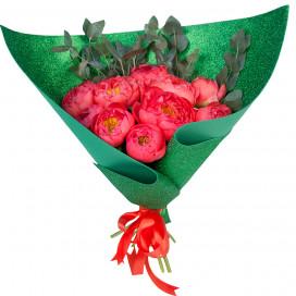 Букет цветов из 11 коралловых пионов и эвкалипта в упаковке (Премиум)