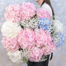 Букет цветов с гортензиями и гипсофилой