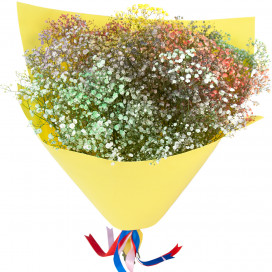 Букет цветов из разноцветной гипсофилы