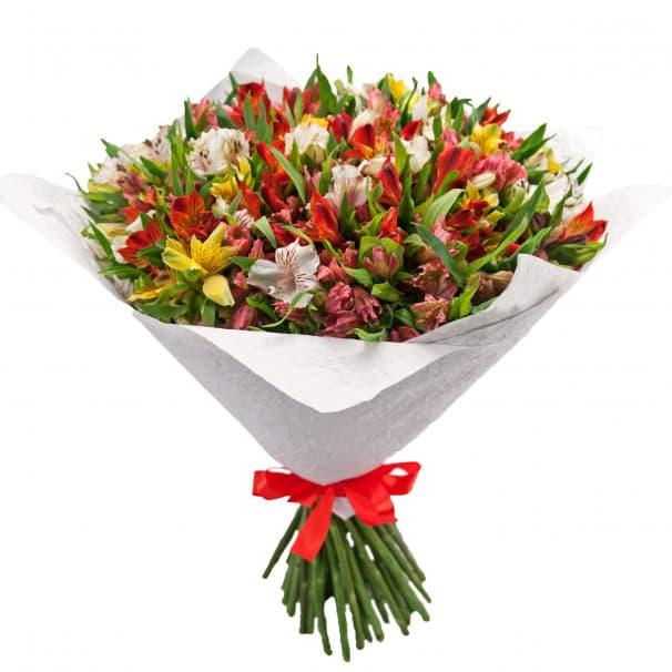 Букет цветов из 51 альстромерии
