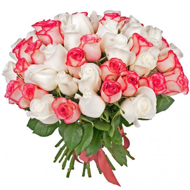 Букет из 51 нежной розы №159