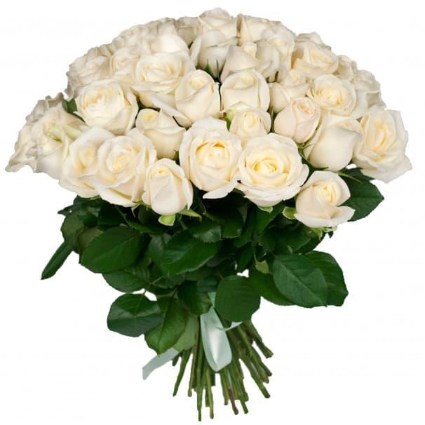 Букет №94 - 51 белая роза