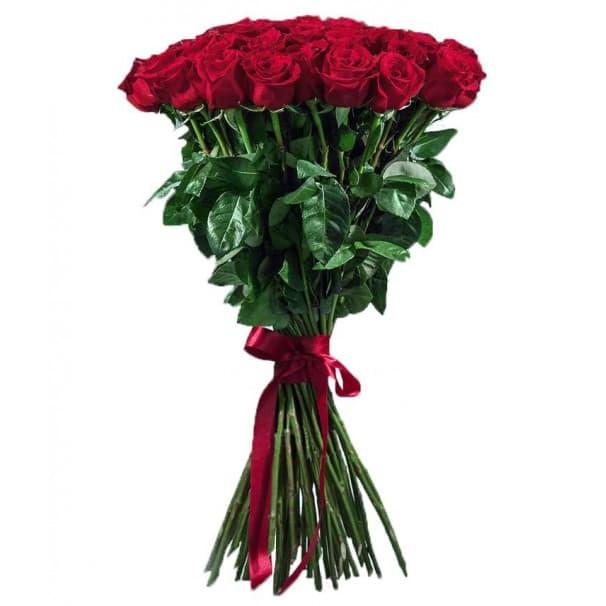 Роза Фридом-60 см