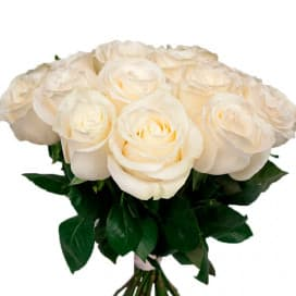 Роза белая-70 см