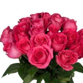 Роза Пинк Флоид - 50 см.
