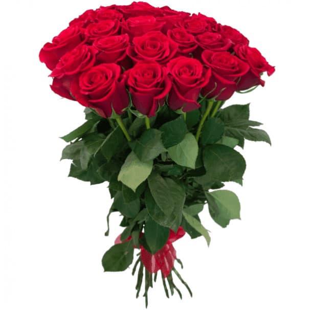 Букет №201 - 25 красных роз Эквадор