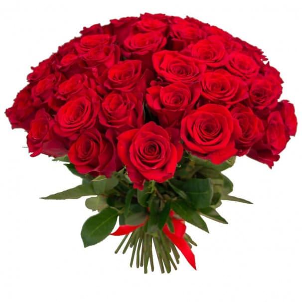 Яркий букет из 55 красных эквадорских роз №133