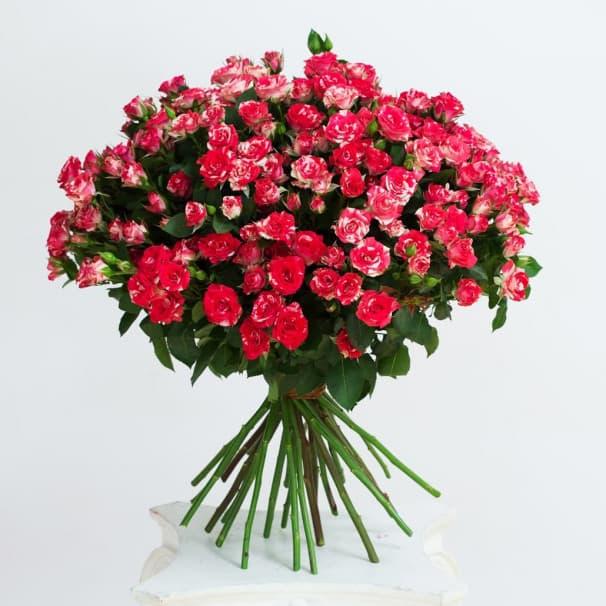 Роза кустовая в ассортименте