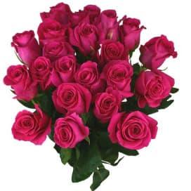 Букет №154 из 21 алой розы, перевязанный атласной лентой