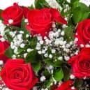 Букет №13 - 15 красных роз с гипсофилами и зеленью