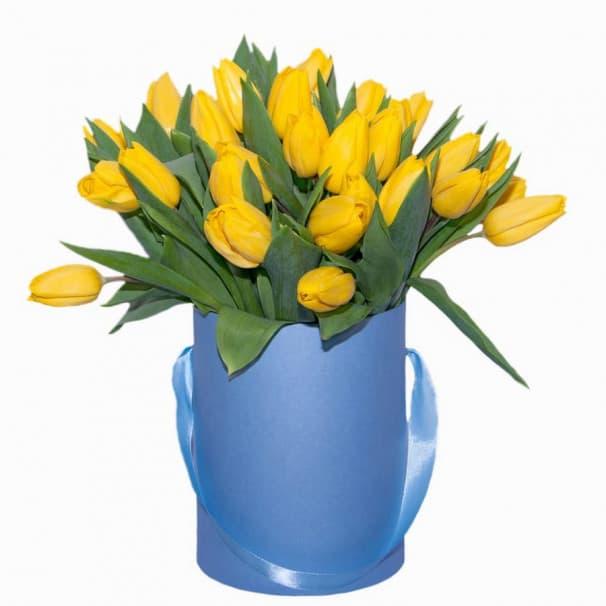 Хэт бокс №1 - 37 тюльпанов в шляпной коробке