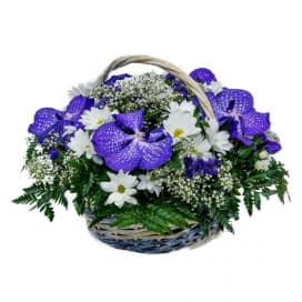 Корзина №32 из фиолетовых орхидей и белых хризантем