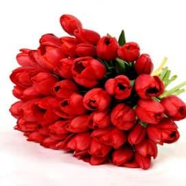 Букет из 45 красных тюльпанов